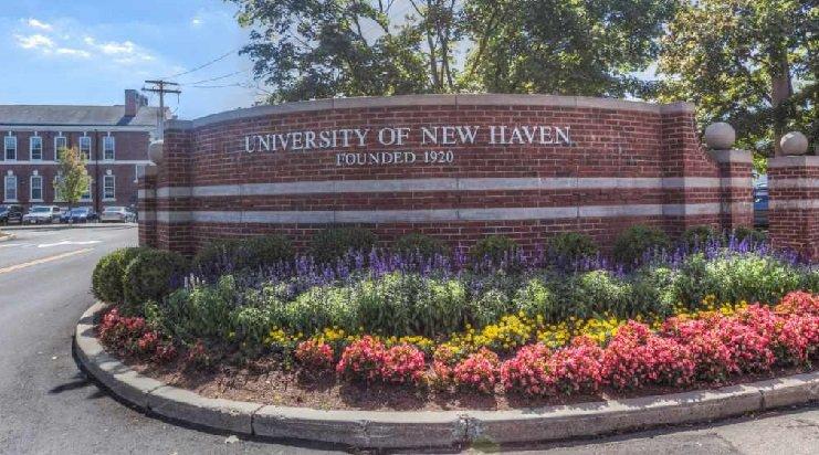 University New Haven